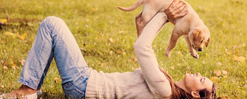 5 Must Have aplikacji dla właścicieli zwierząt domowych